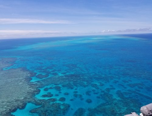 Put the Great Barrier Reef on your bucket list!